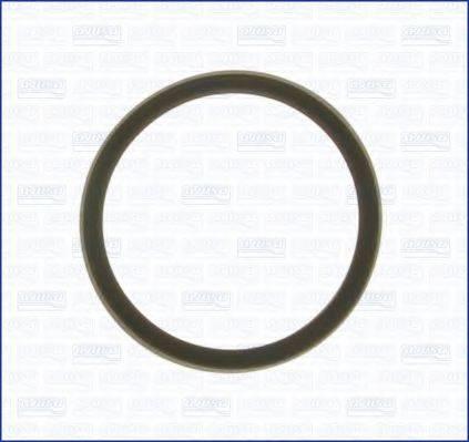 Прокладка, термостат AJUSA 00975700